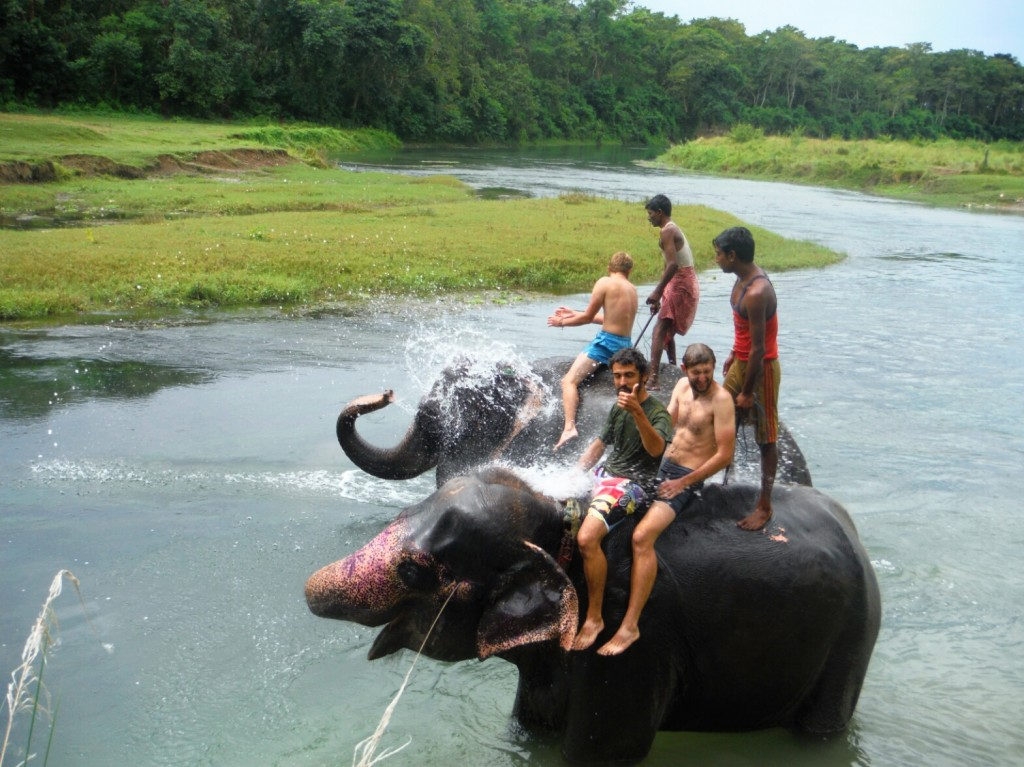 Kąpiel ze słoniami