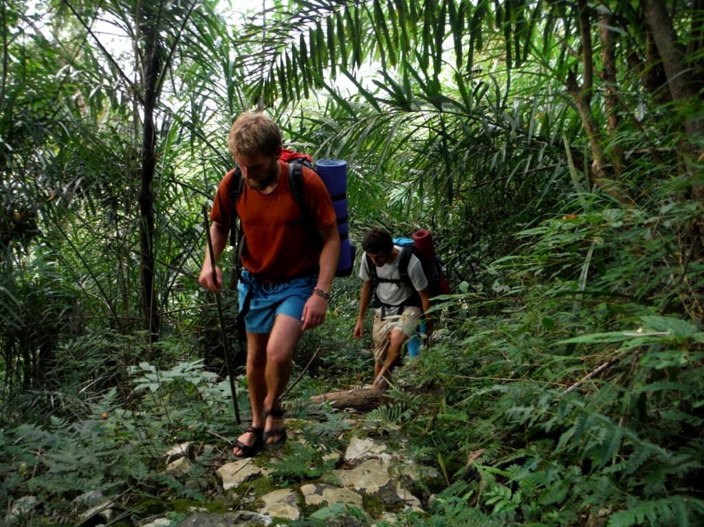 Powrót przez dżunglę