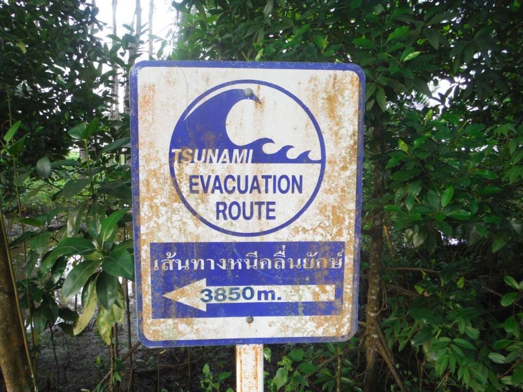 Znak ostrzegający przed tsunami