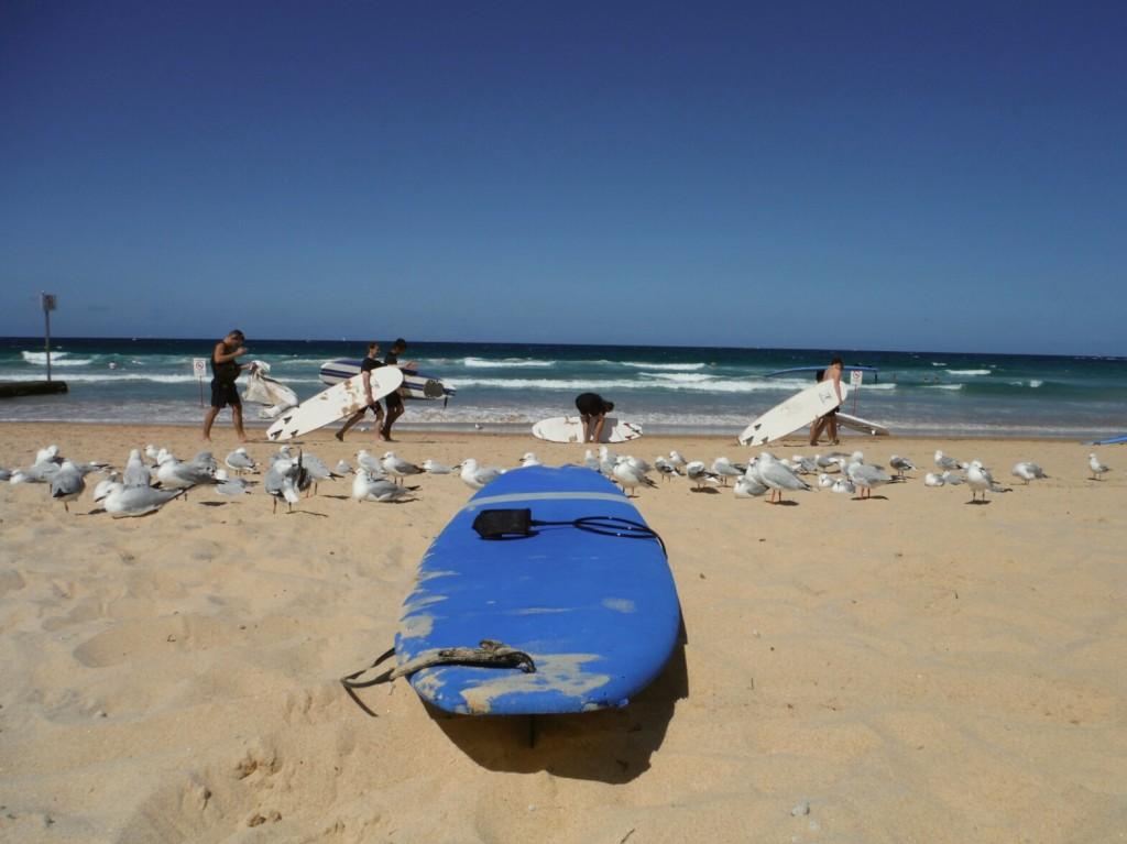 Przed surfingiem