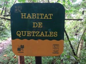 Tu mieszkają quetzale