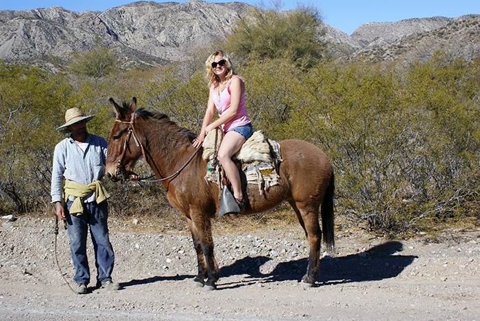 Gaucho i jego koń