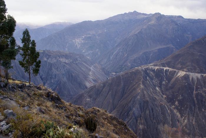 Widok z krawędzi kanionu